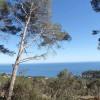 Plot for sale  Begur Costa Brava Plots views over the beach of Aiguablava de Begur