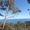 Image for Parcelas con vistas al mar en Begur