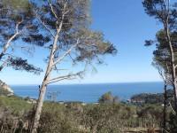 Grundstück zu verkaufen  Begur Costa Brava Baugrundstück mit Blick zum Strand d'Aiguablava von Begur