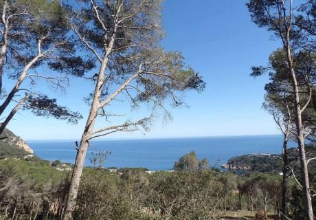 Image for Parcela con vistas al mar en urbanización Montcal de Begur en Cosra Brava