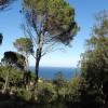 Parcela a la venta  Begur Costa Brava Parcelas con vistas al pueblo de Begur y al mar