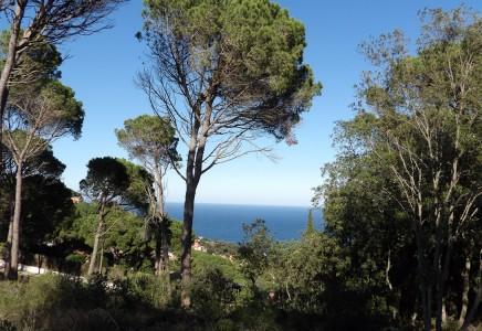 Terrain à vendre  Begur Costa Brava Terrain avec vue de Begur et la mer